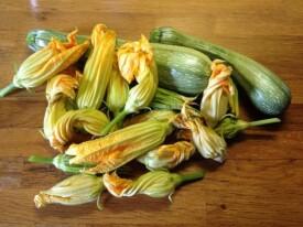 ricette fiori di zucca ripieni